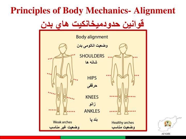 Principles of Body Mechanics- Alignment