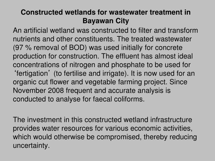 Constructed wetlands for wastewater treatment in Bayawan City
