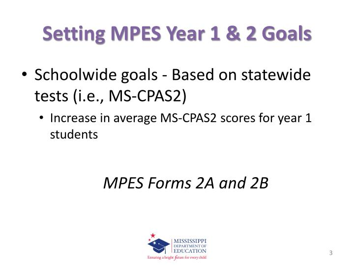 Setting MPES Year 1 & 2 Goals