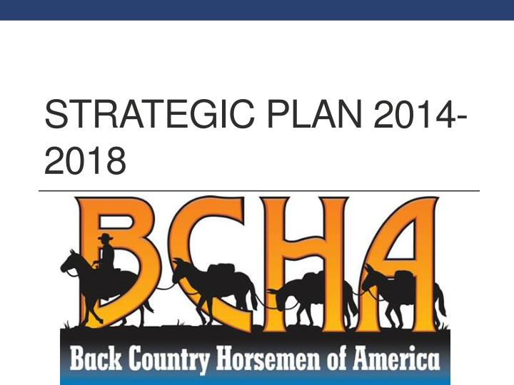 Strategic plan 2014 2018