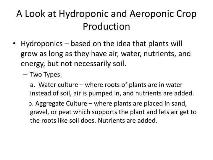 A Look at Hydroponic and Aeroponic Crop Production