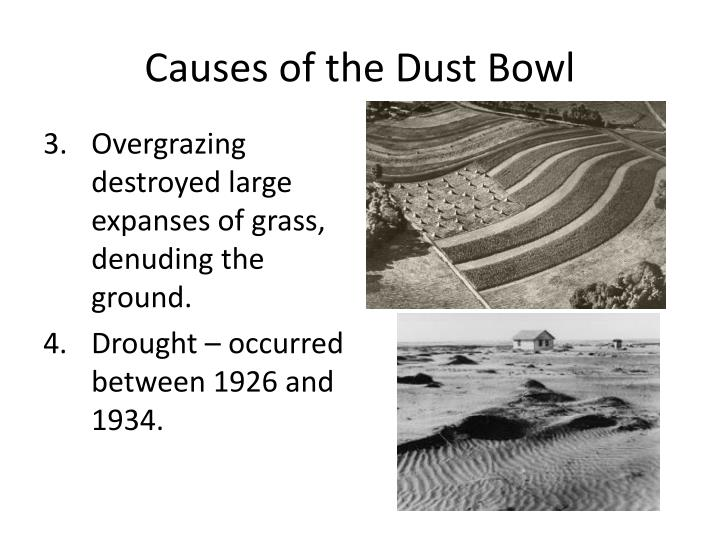 Causes of the Dust Bowl