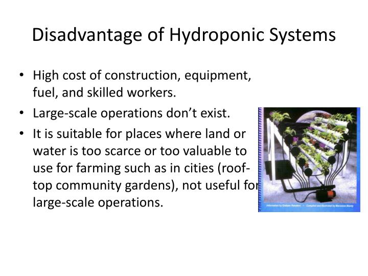 Disadvantage of Hydroponic Systems