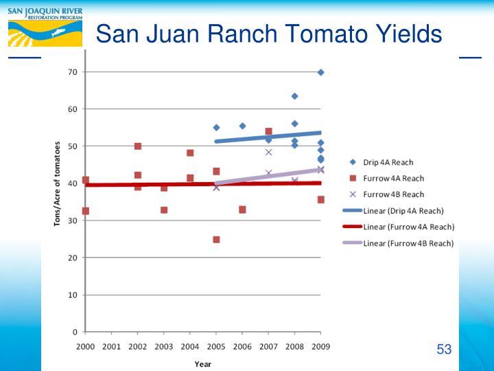 San Juan Ranch Tomato Yields