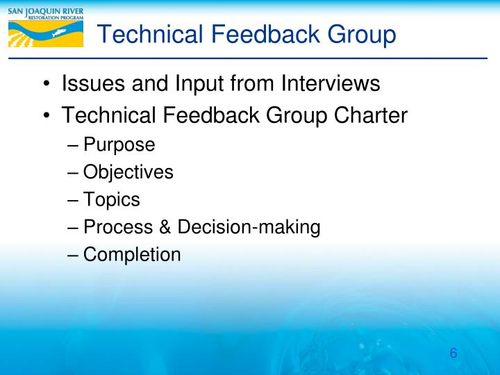 Technical Feedback Group