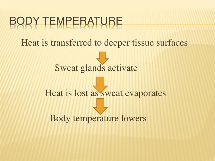 Heat is transferred to deeper tissue surfaces