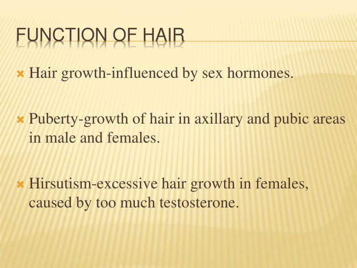 Hair growth-influenced by sex hormones.