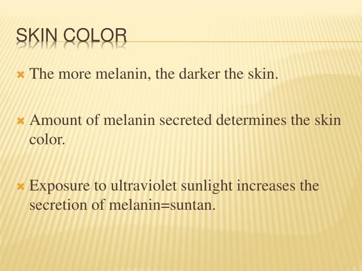 The more melanin, the darker the skin.