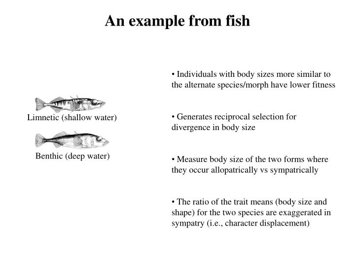 An example from fish