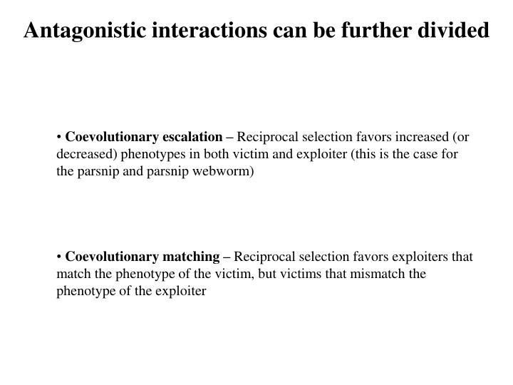 Antagonistic interactions can be further divided