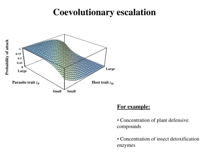 Coevolutionary escalation