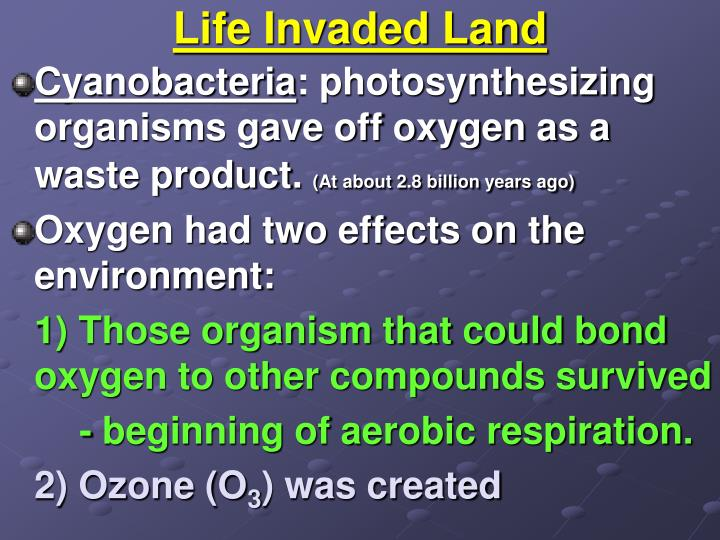 Life Invaded Land