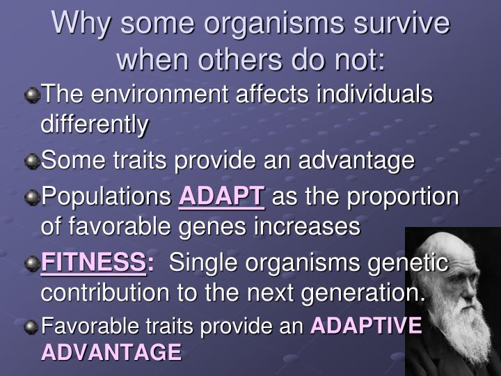 Why some organisms survive when others do not: