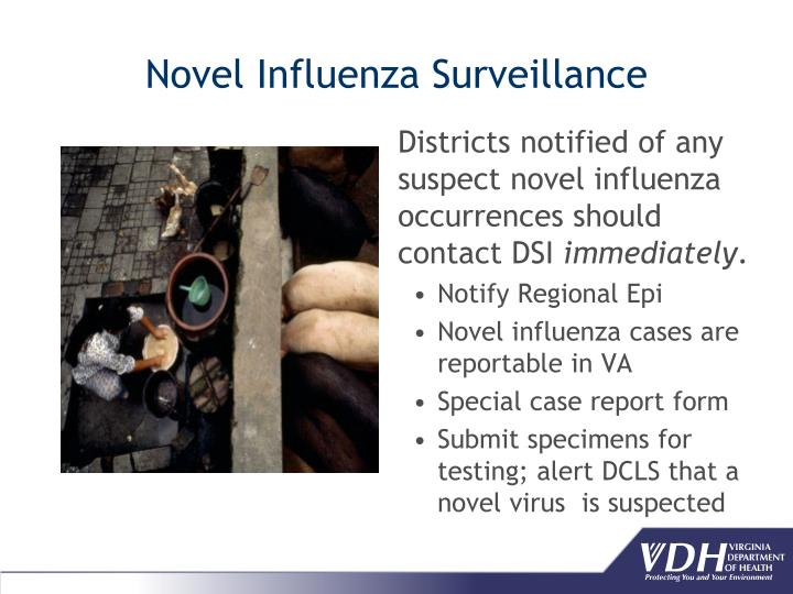 Districts notified of any suspect novel influenza occurrences should contact DSI