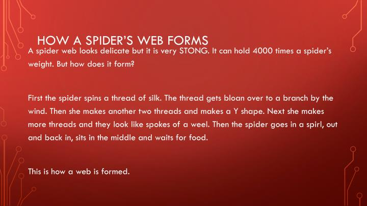 How a Spider's web forms