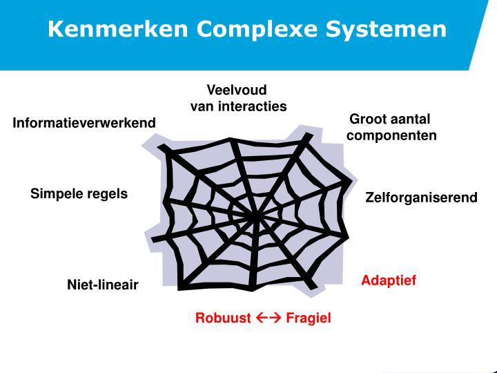 Kenmerken Complexe Systemen