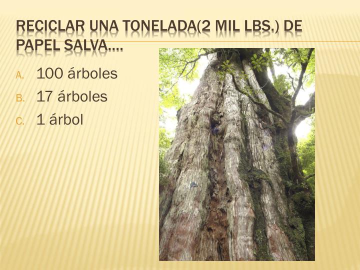 100 árboles