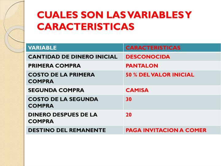CUALES SON LAS VARIABLES Y CARACTERISTICAS