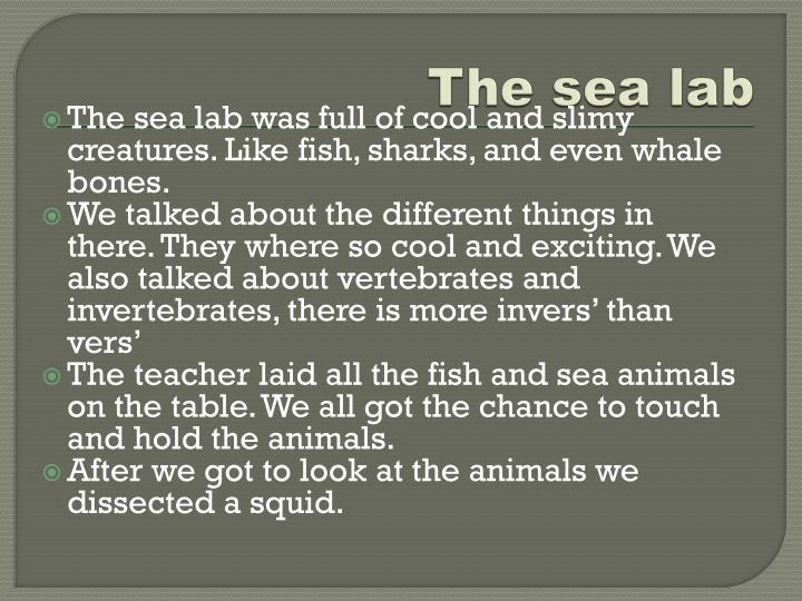 The sea lab