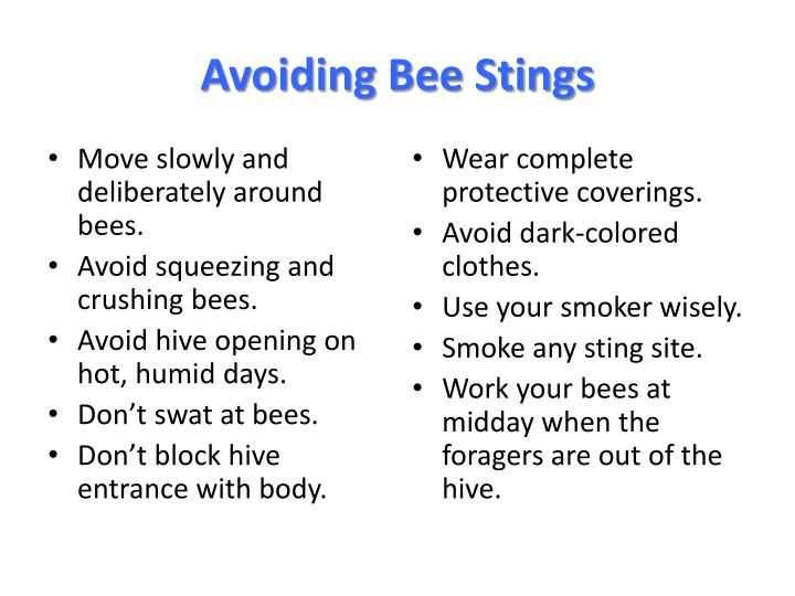Avoiding Bee Stings
