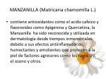manzanilla matricaria chamomilla l