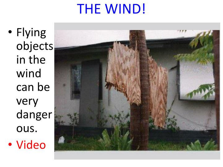 THE WIND!