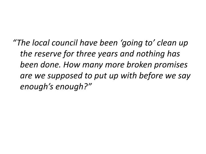 The local council have been going to clean up the reserve for three years and nothing has been done. How many more broken promises are we supposed to put up with before we say enoughs enough?