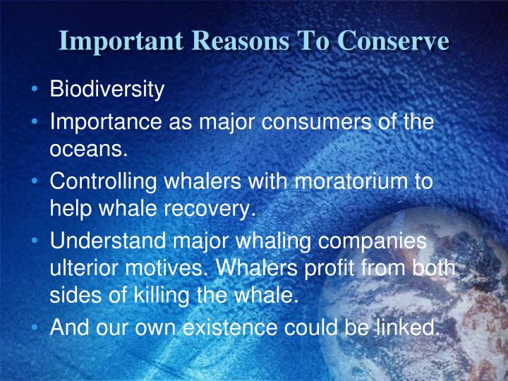 Important Reasons To Conserve
