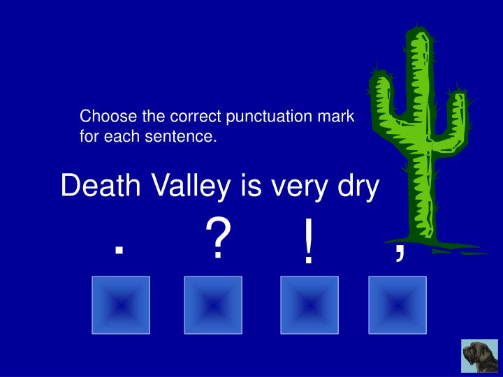 Choose the correct punctuation mark