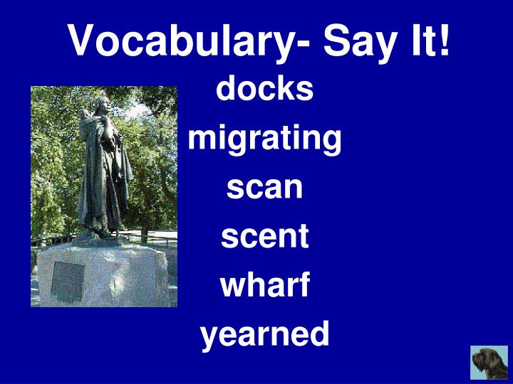 Vocabulary- Say It!
