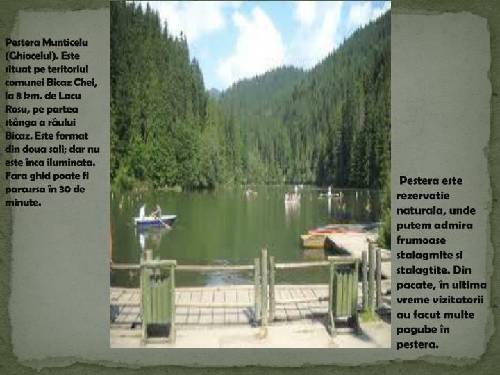 Pestera Munticelu (Ghiocelul). Este situat pe teritoriul comunei Bicaz Chei, la 8 km. de Lacu Rosu, pe partea stânga a râului Bicaz.