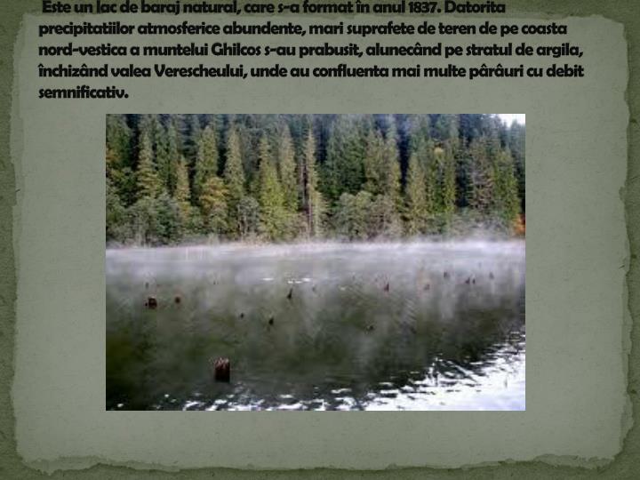Este un lac de baraj natural, care s-a format în anul 1837. Datorita precipitatiilor atmosferice abundente, mari suprafete de teren de pe coasta nord-vestica a muntelui Ghilcos s-au prabusit, alunecând pe stratul de argila, închizând valea Verescheului, unde au confluenta mai multe pârâuri cu debit semnificativ.