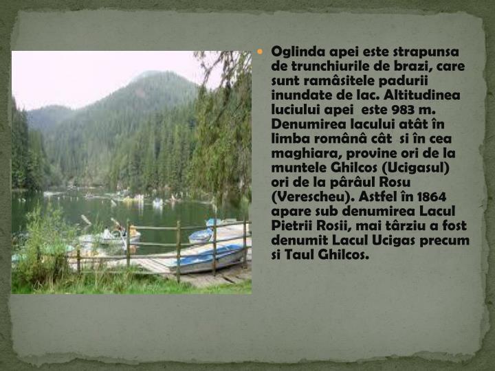 Oglinda apei este strapunsa de trunchiurile de brazi, care sunt ramâsitele padurii inundate de lac. Altitudinea luciului apei  este 983 m.                                                                                       Denumirea lacului atât în limba românâ cât  si în cea maghiara, provine ori de la muntele Ghilcos (Ucigasul) ori de la pârâul Rosu (Verescheu).