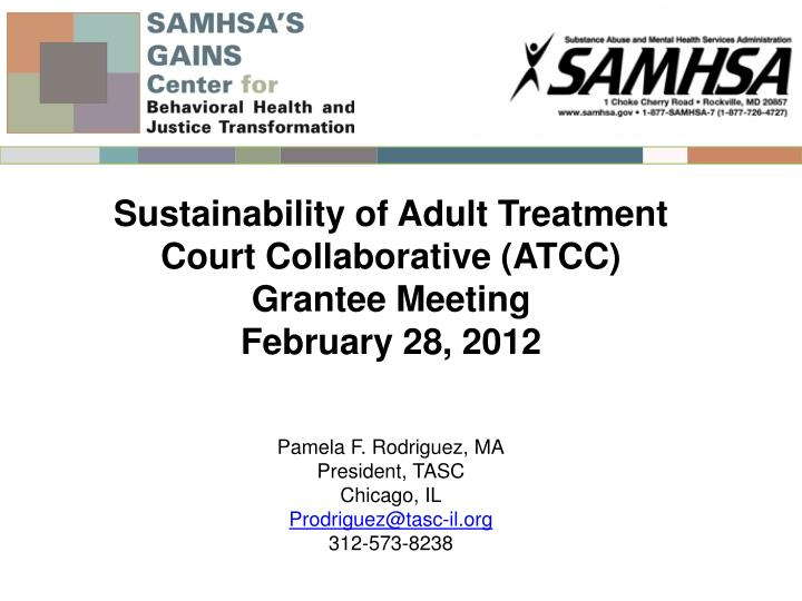 Sustainability of Adult Treatment Court Collaborative (ATCC)