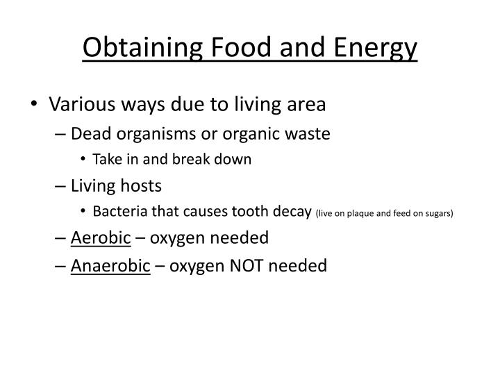 Obtaining Food and Energy