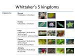 whittaker s 5 kingdoms