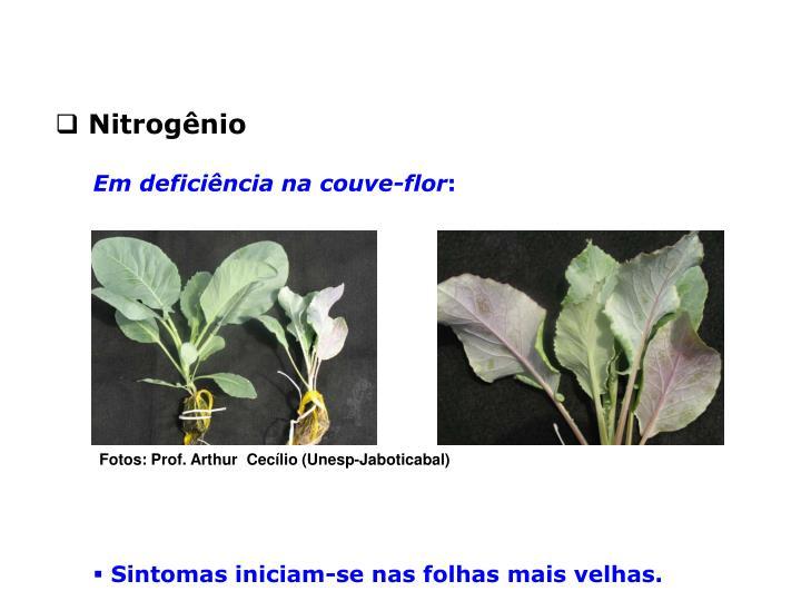 Nitrogênio