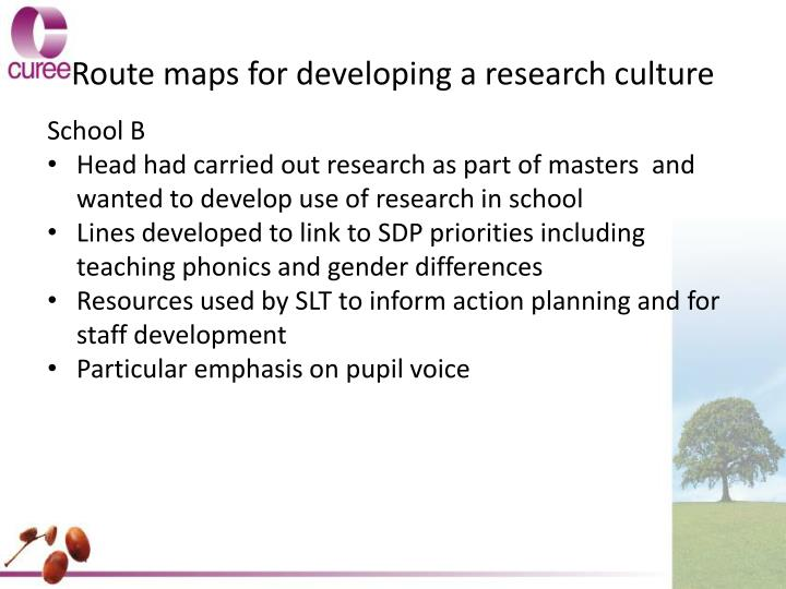 Route maps for developing a research culture