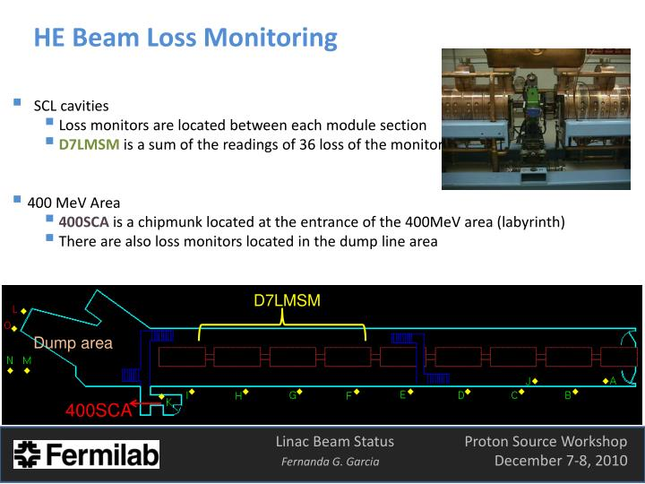 HE Beam Loss Monitoring