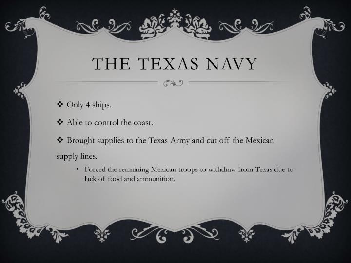 The Texas Navy