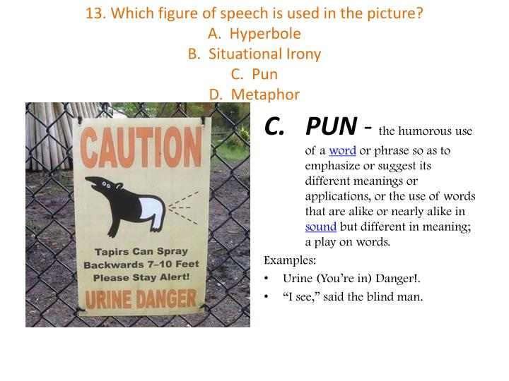 13. Which figure of speech is used in the picture?