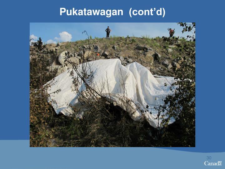 Pukatawagan