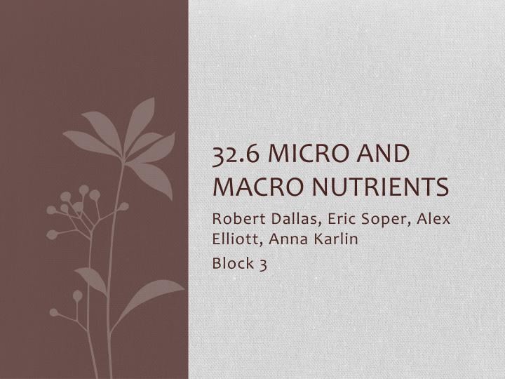 32 6 micro and macro nutrients