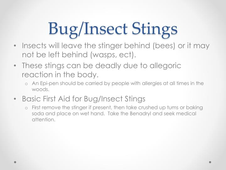 Bug/Insect Stings