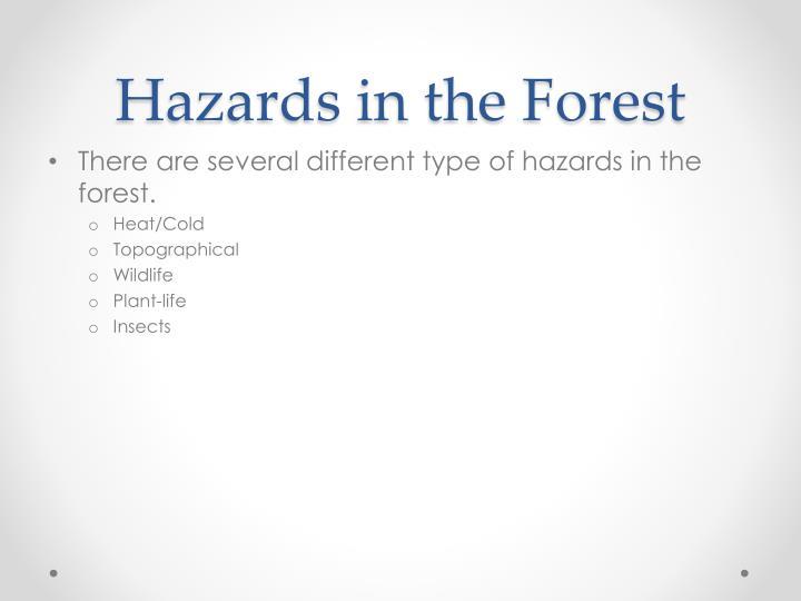 Hazards in the Forest