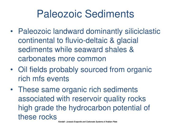 Paleozoic Sediments