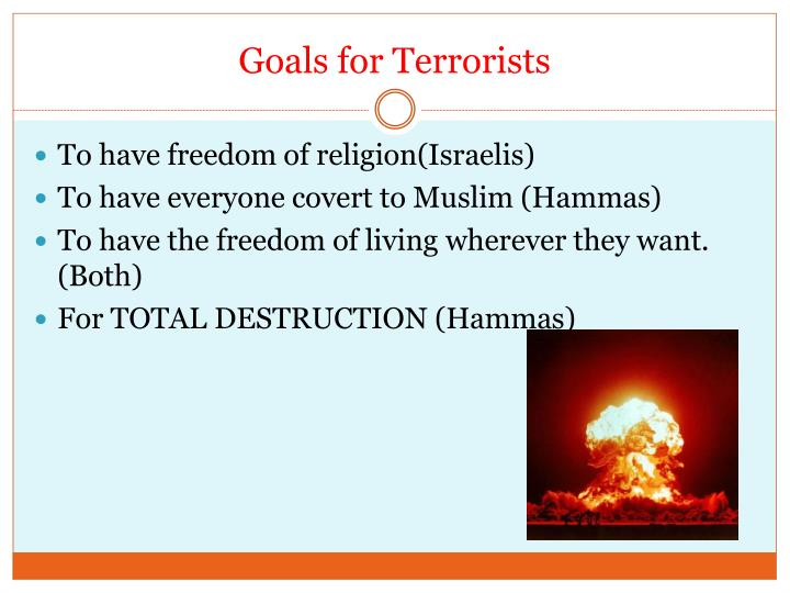 Goals for Terrorists