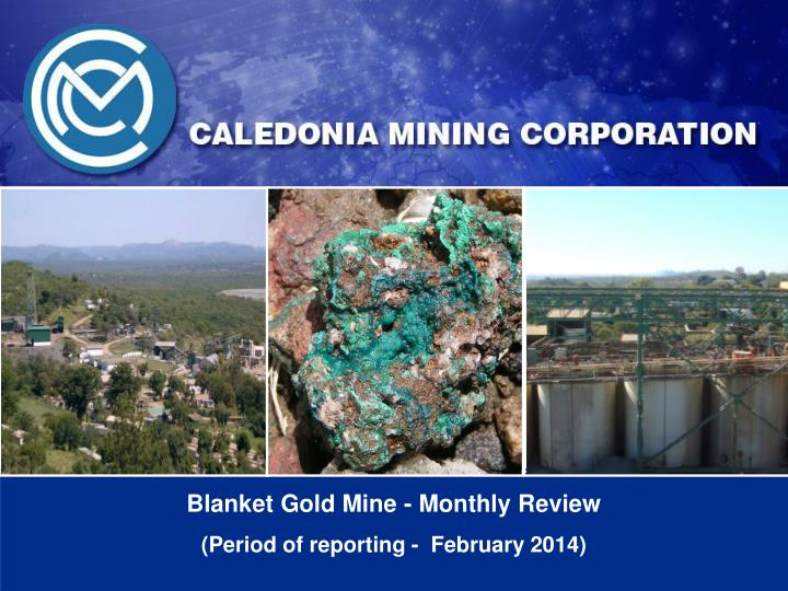 Blanket gold mine monthly review period of reporting february 2014