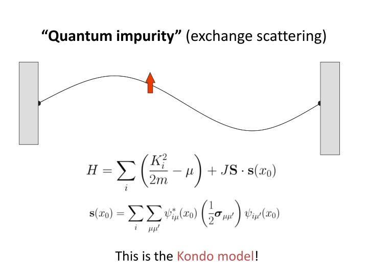 """""""Quantum impurity"""""""