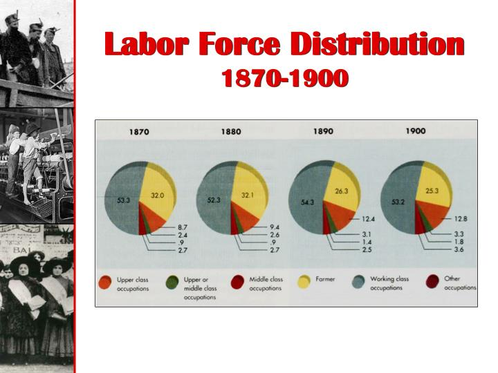 Labor Force Distribution